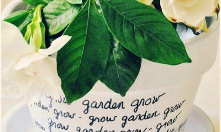 DIY Message Flower Pots