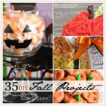 35 Extraordinary DIY Fall Projects