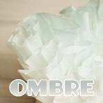 Ombre Mini Wreath