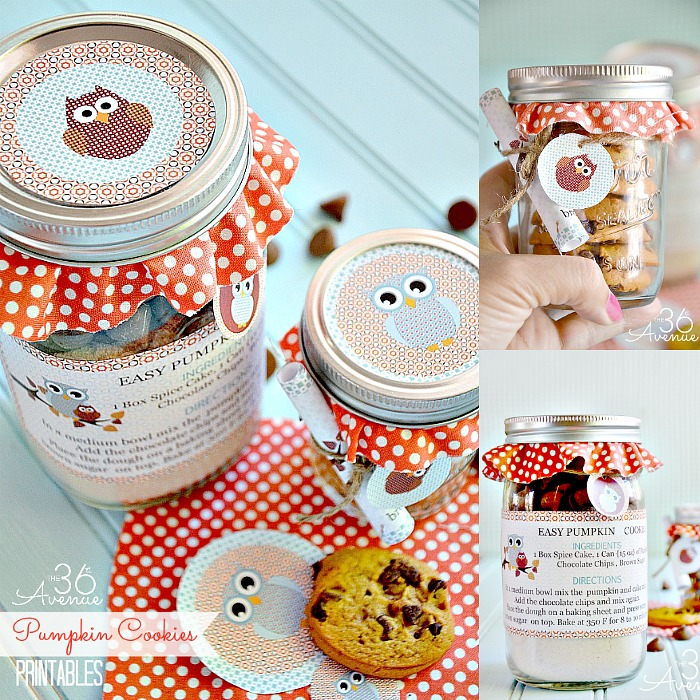 Fall Dessert Ideas - Such a cute gift idea! Pumpkin Cookie Recipe and Free Printable.