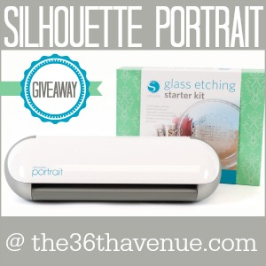 Awesome Silhouette Portrait Giveaway and AMAZING deals!!!