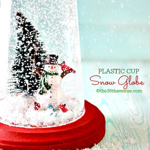 Snow Globe – Christmas Gift Idea