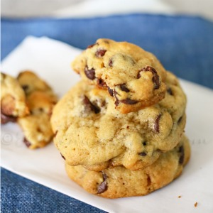 Chocolate Chip Pecan Cookie Recipe... Yummy!