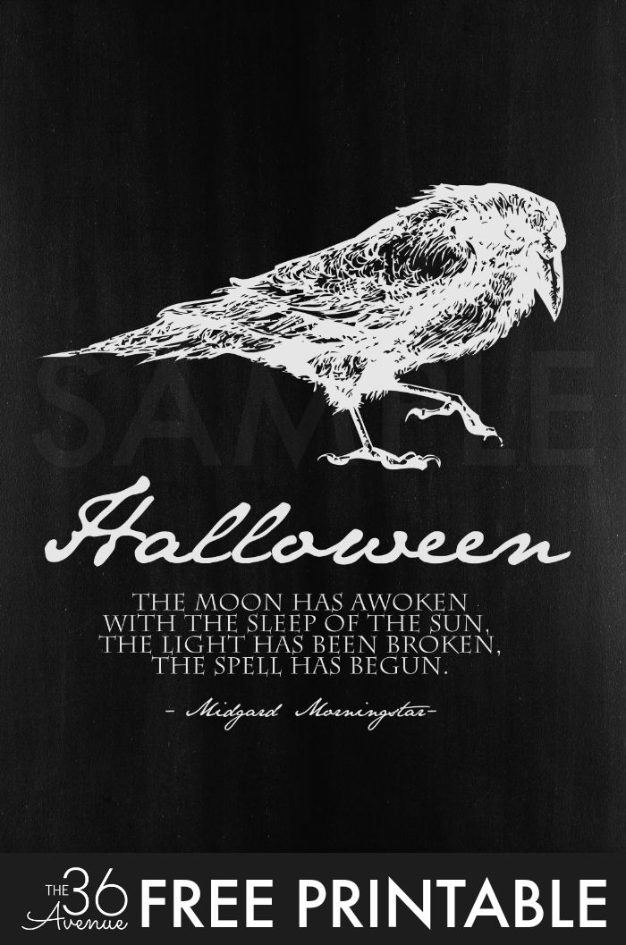 Halloween - Halloween Free Printable Set by the36thavenue.com - Halloween Quotes