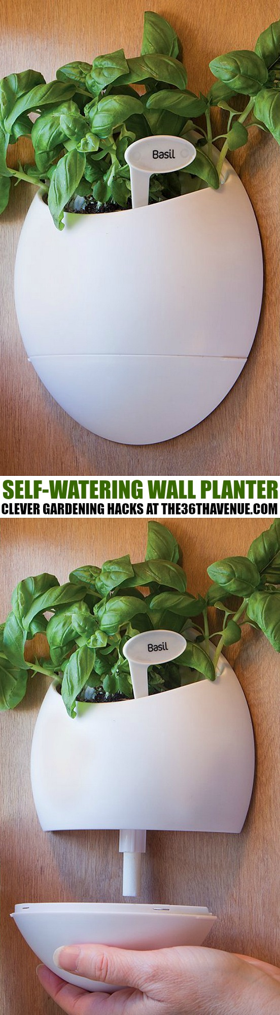 Gardening Hack the36thavenue.com