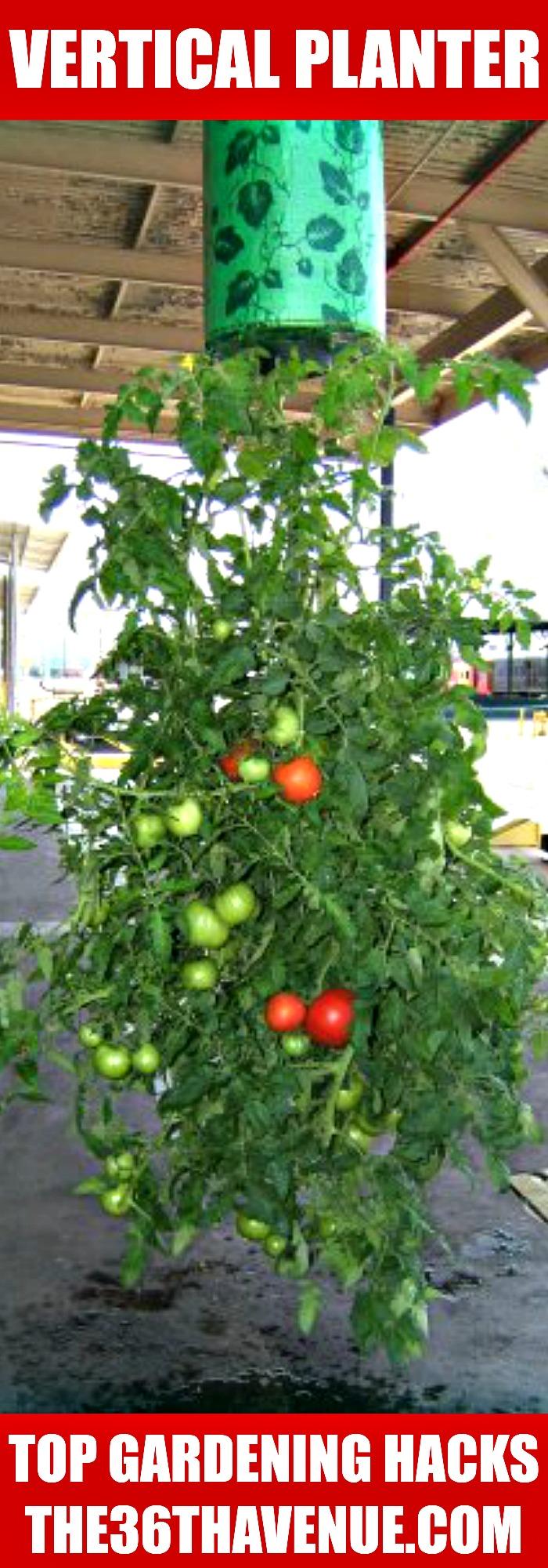 vertical planter the36thavenue.com