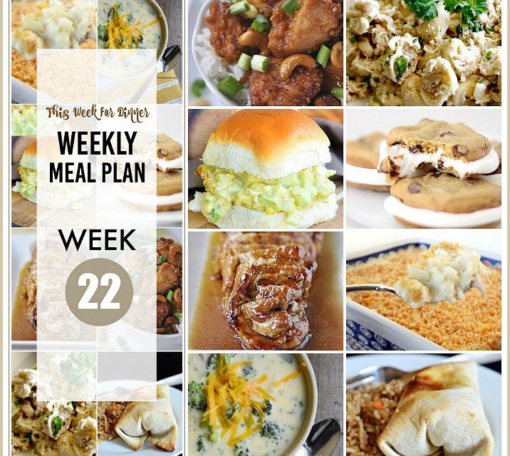 Weekly Meal Plan- Week 22