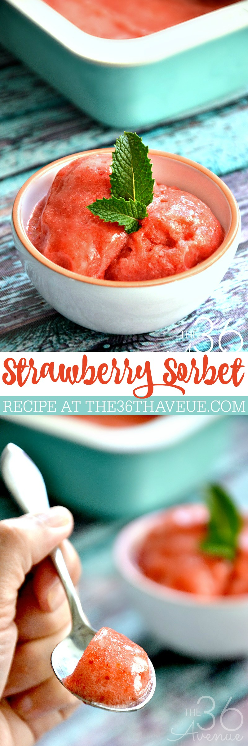 Delicious and easy Strawberry Sorbet Recipe. Just two ingredients and tons of flavor. This is the perfect dessert or cold summer snack.