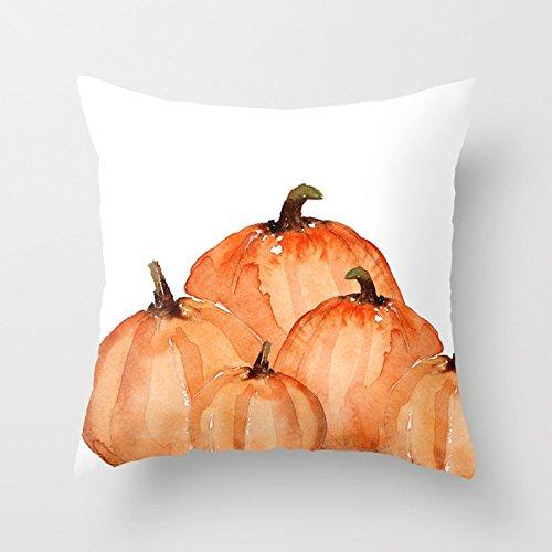 pillow 15