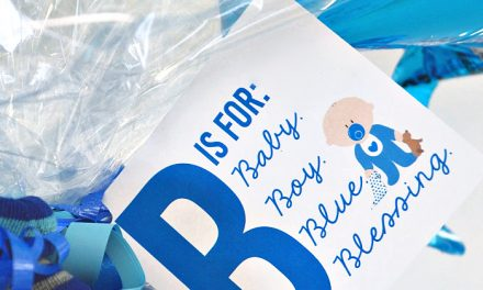 Baby Boy Blue Basket Gift Idea